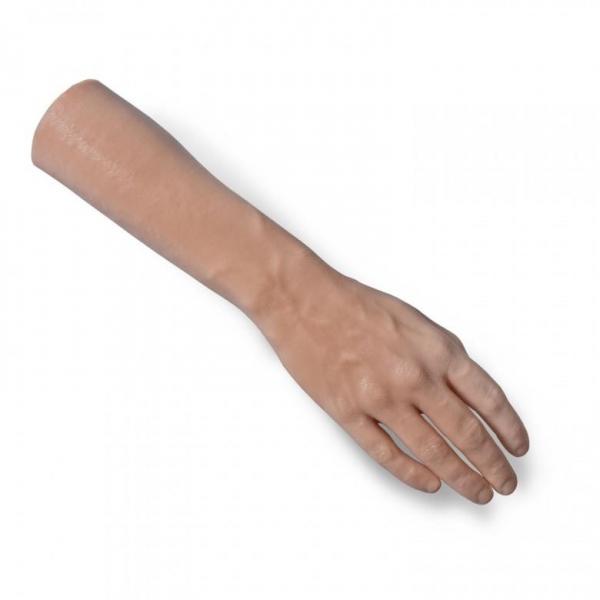 A Pound of Flesh - rechte Hand mit Unterarm